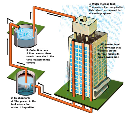Rain Water Harvesting – Why, Benefits, Techniques & More