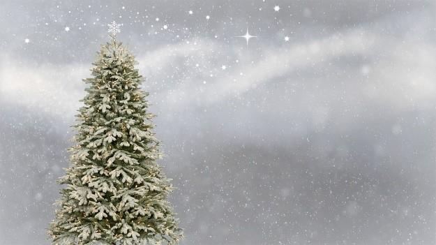 christmas season, Christmas, xmas, christmas festival, christmas festival 2017