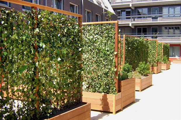 Vertical garden, living wall, green wall, indoor air pollution